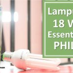Lampu PLC 18 Watt Essential 3U PHILIPS